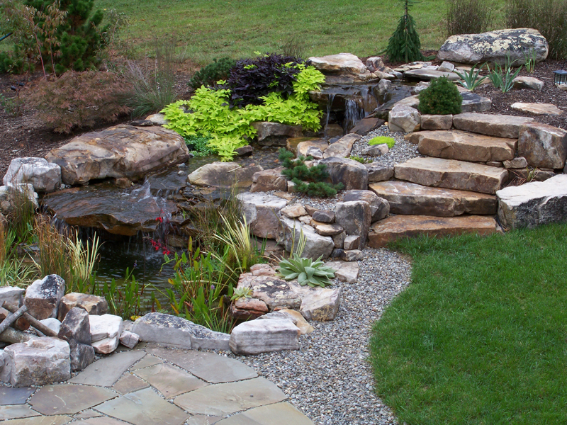 Water features swim ponds for Pond water features